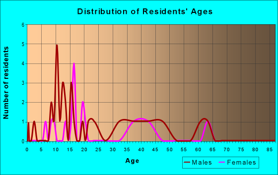 Age and Sex of Residents in zip code 19113