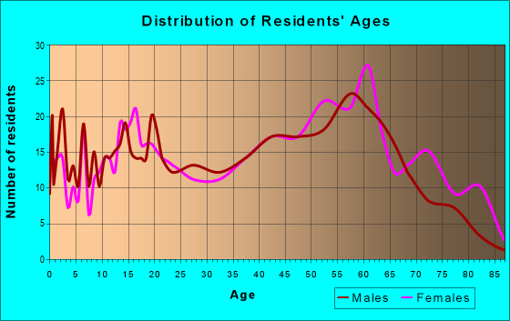 Age and Sex of Residents in zip code 23882