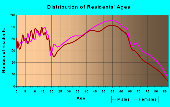 Age and Sex of Residents in zip code 24019