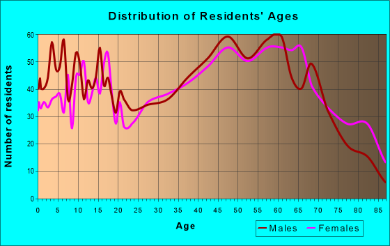 Age and Sex of Residents in zip code 24091