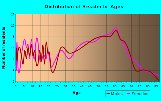 Age and Sex of Residents in zip code 24128