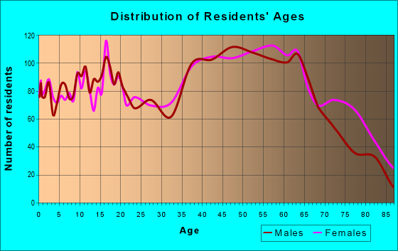 Age and Sex of Residents in zip code 24301