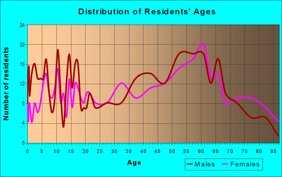 Age and Sex of Residents in zip code 24598