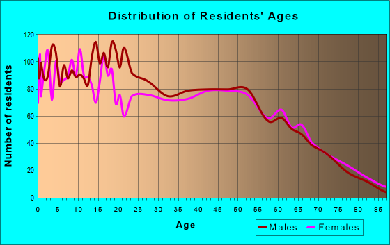 Age and Sex of Residents in zip code 33567