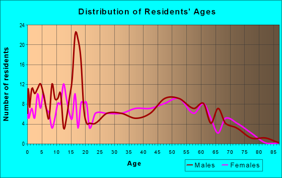 Age and Sex of Residents in zip code 42333
