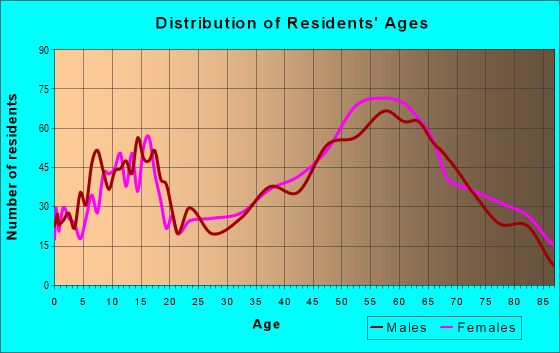 Age and Sex of Residents in zip code 49740