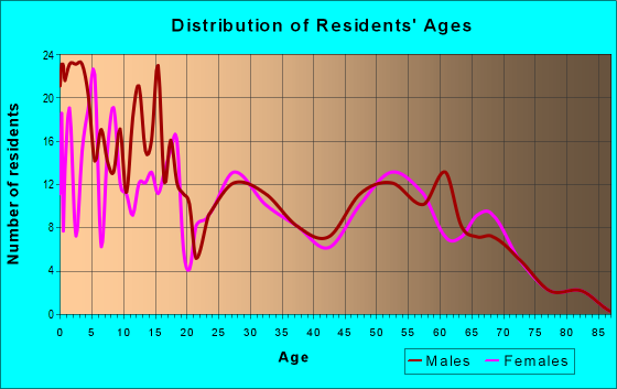 Age and Sex of Residents in zip code 84513