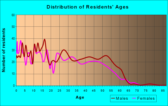 Age and Sex of Residents in zip code 85540