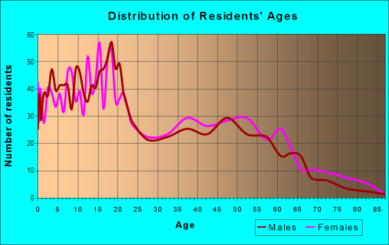 Age and Sex of Residents in zip code 87311