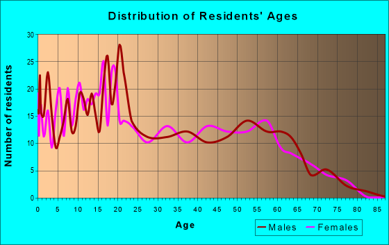 Age and Sex of Residents in zip code 87317