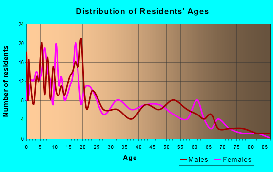 Age and Sex of Residents in zip code 87941