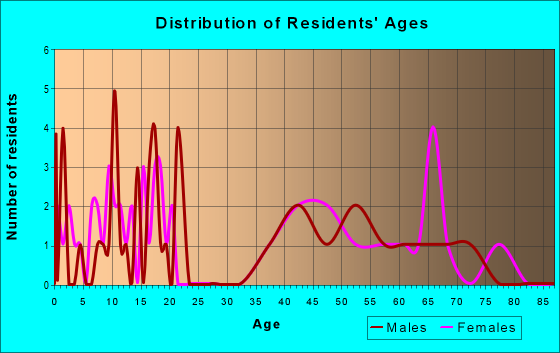 Age and Sex of Residents in zip code 88120
