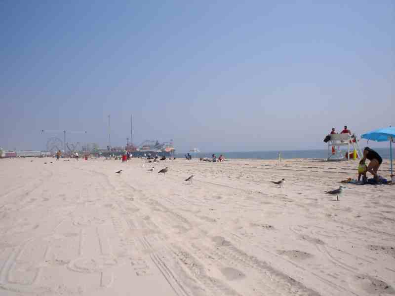 Seaside Heights Nj Beach