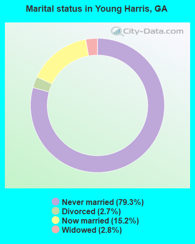 Marital status in Young Harris, GA