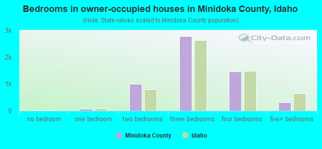 Bedrooms in owner-occupied houses in Minidoka County, Idaho