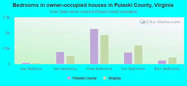 Bedrooms in owner-occupied houses in Pulaski County, Virginia