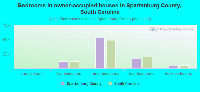 Bedrooms in owner-occupied houses in Spartanburg County, South Carolina