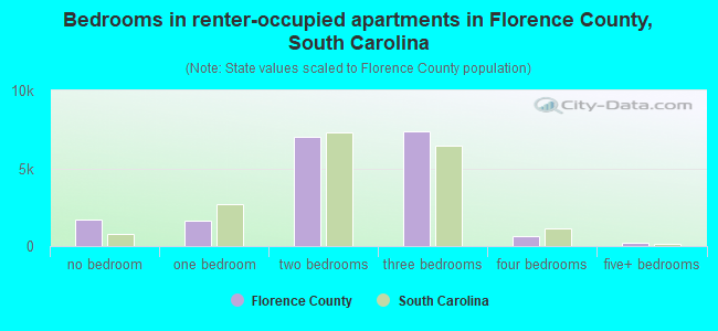 Bedrooms in renter-occupied apartments in Florence County, South Carolina