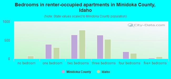 Bedrooms in renter-occupied apartments in Minidoka County, Idaho