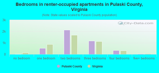 Bedrooms in renter-occupied apartments in Pulaski County, Virginia