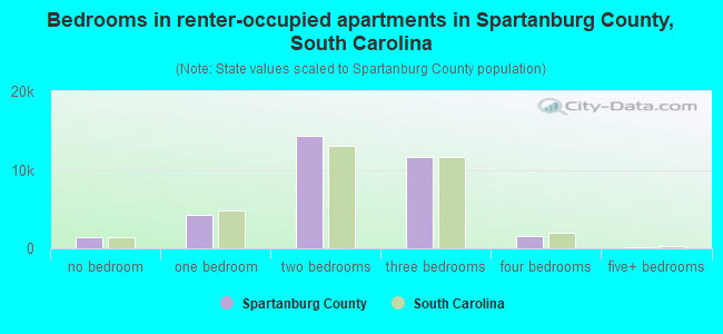 Bedrooms in renter-occupied apartments in Spartanburg County, South Carolina