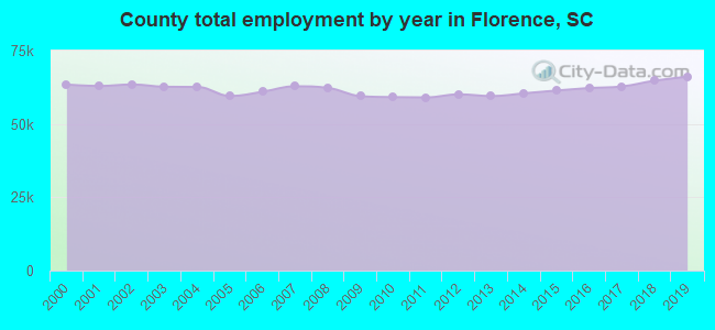 County total employment by year in Florence, SC