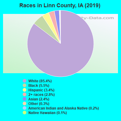 Races in Linn County, IA (2017)