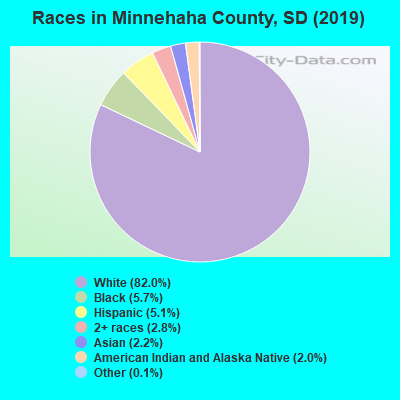 Races in Minnehaha County, SD (2017)