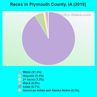 Races in Plymouth County, IA (2017)