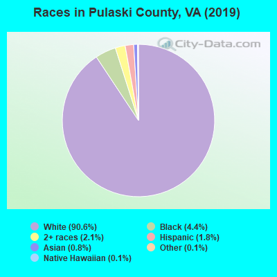 Races in Pulaski County, VA (2018)