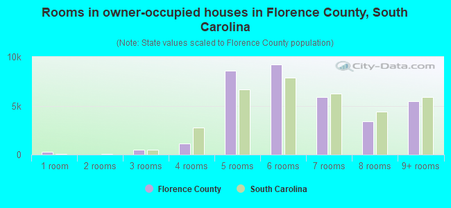 Rooms in owner-occupied houses in Florence County, South Carolina