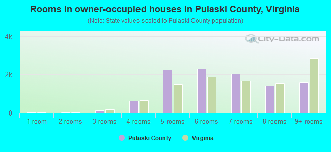 Rooms in owner-occupied houses in Pulaski County, Virginia