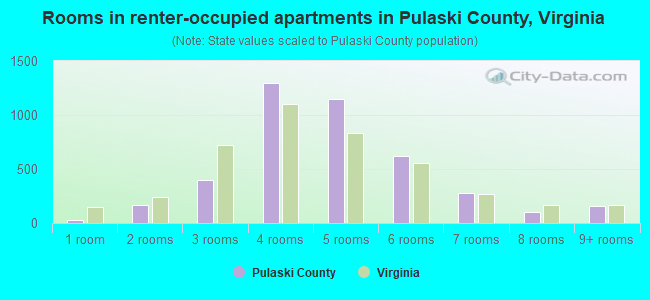 Rooms in renter-occupied apartments in Pulaski County, Virginia