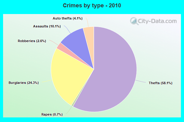 Crimes by type - 2010