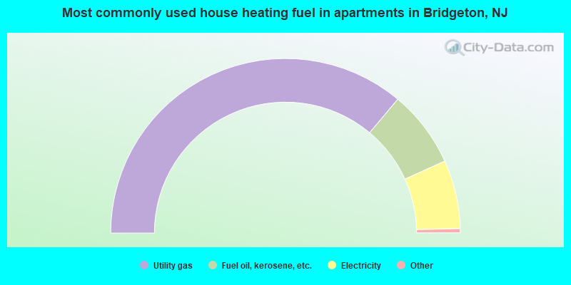 Most commonly used house heating fuel in apartments in Bridgeton, NJ
