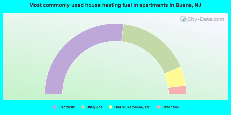 Most commonly used house heating fuel in apartments in Buena, NJ