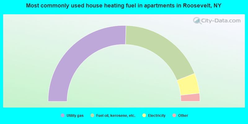 Most commonly used house heating fuel in apartments in Roosevelt, NY