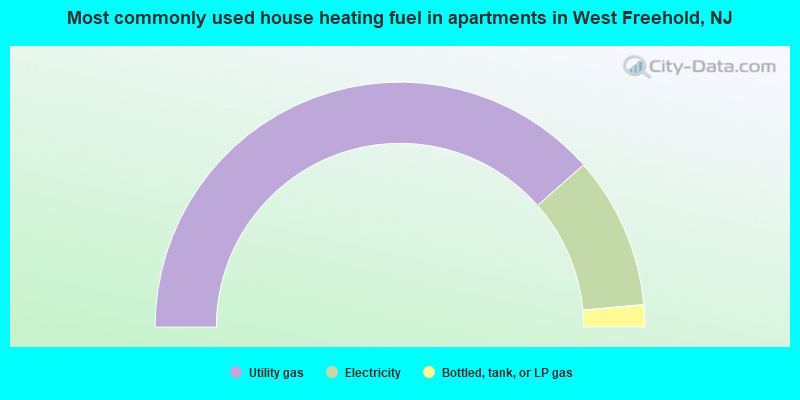 Most commonly used house heating fuel in apartments in West Freehold, NJ