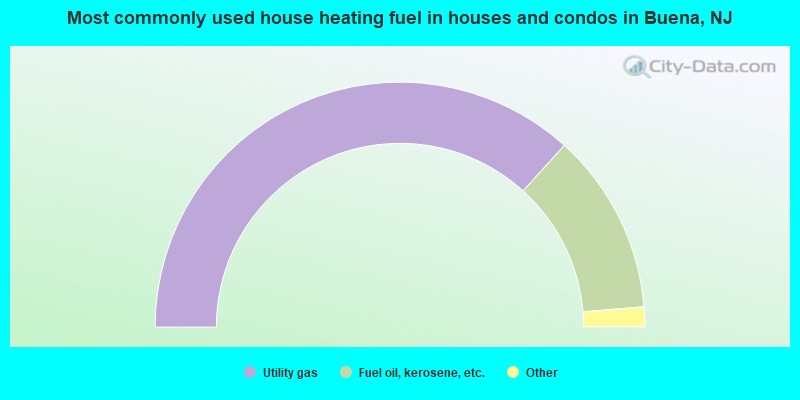 Most commonly used house heating fuel in houses and condos in Buena, NJ
