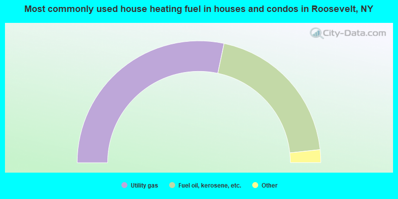 Most commonly used house heating fuel in houses and condos in Roosevelt, NY