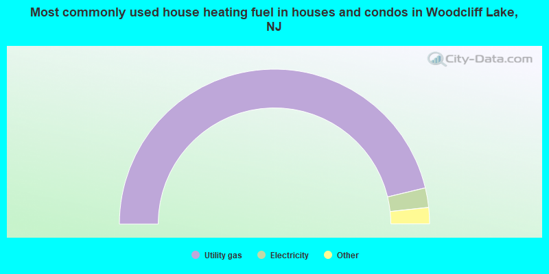 Most commonly used house heating fuel in houses and condos in Woodcliff Lake, NJ