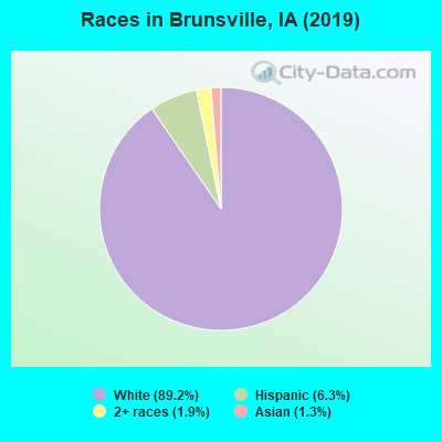 Races in Brunsville, IA (2010)