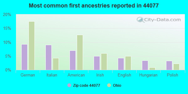 Most common first ancestries reported in 44077